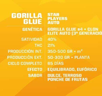 SensorySeeds Descripción Semillas Gorilla Glue Autoflorecientes