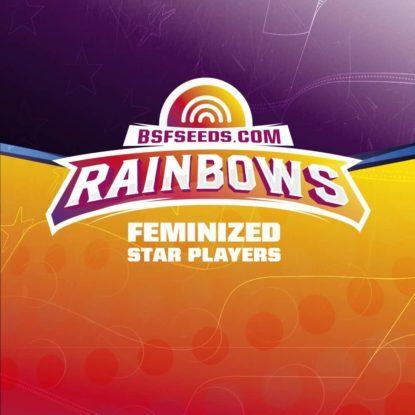 Logo de semillas feminizadas Rainbows