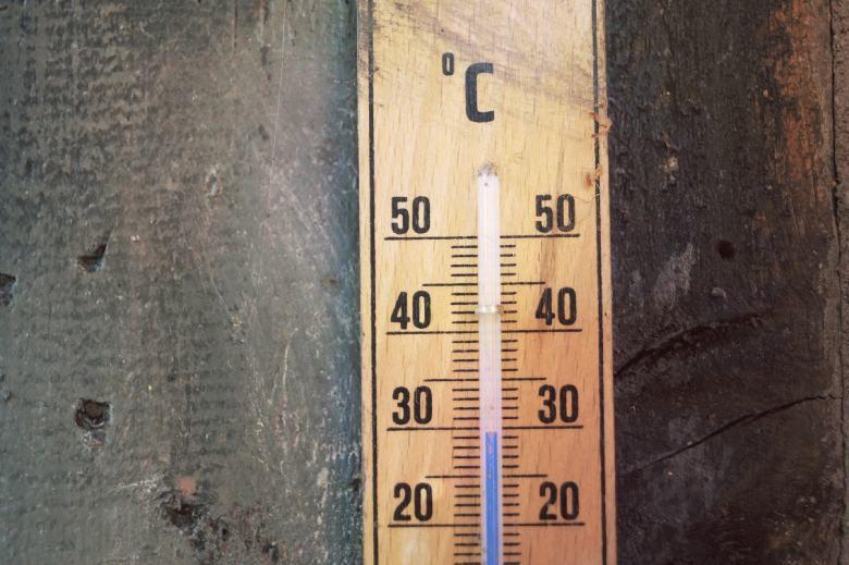 cambios de temperatura de las semillas de cáñamo