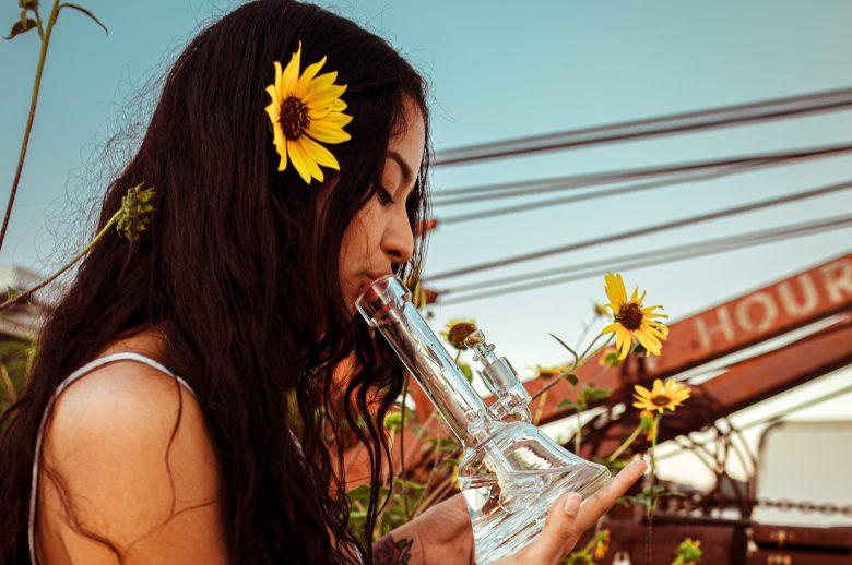 fumar semillas de cannabis