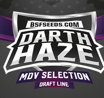 Logo Darth Haze de semillas feminizadas