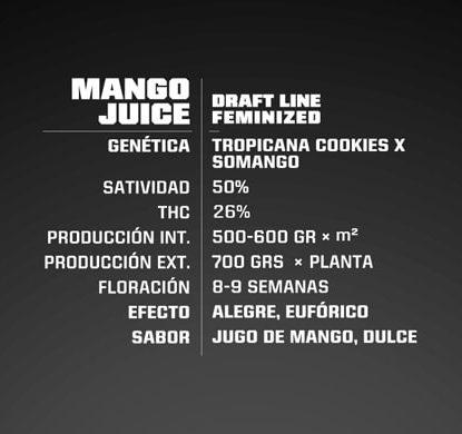 Info semillas cannabis feminizadas Mango Juice