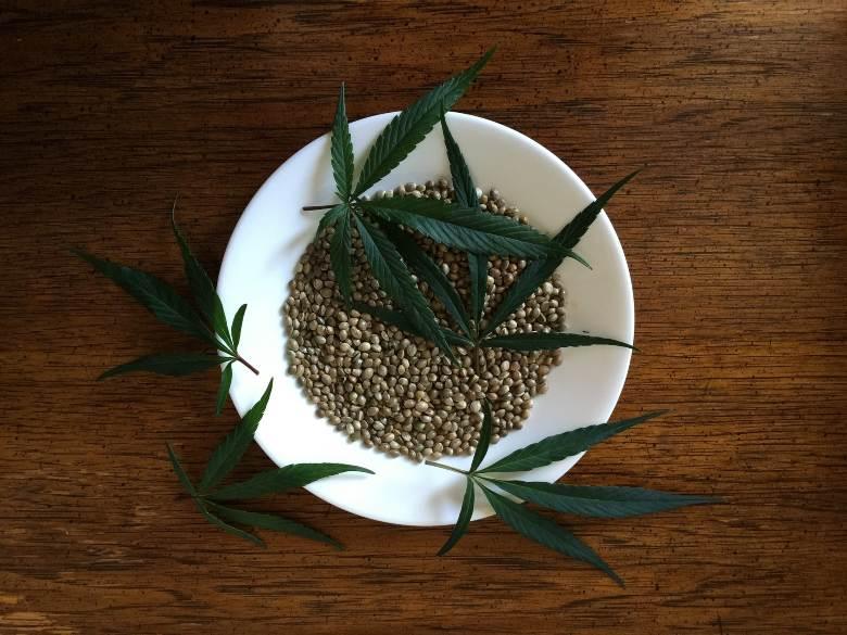 semillas de marihuana de calidad