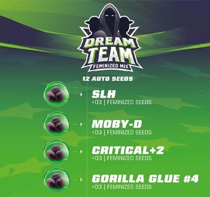 Descripcion del kit de semillas de marihuana Dream team Feminized Mix