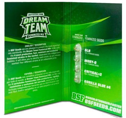 Paquete de semillas de marihuana Dream Team Feminized Mix