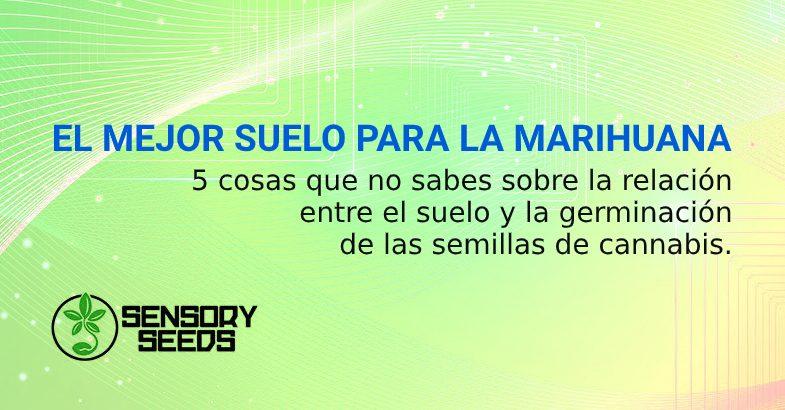MEJOR SUELO POSIBLE PARA SEMILLAS DE MARIHUANA
