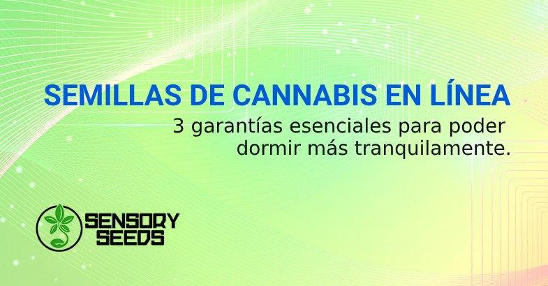 SEMILLAS DE CANNABIS EN LÍNEA