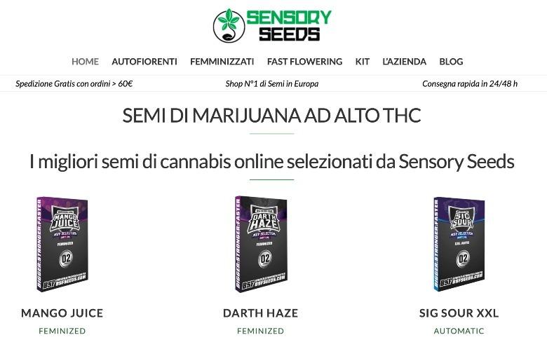 dónde encontrar semillas de cannabis para recolectarlas en línea