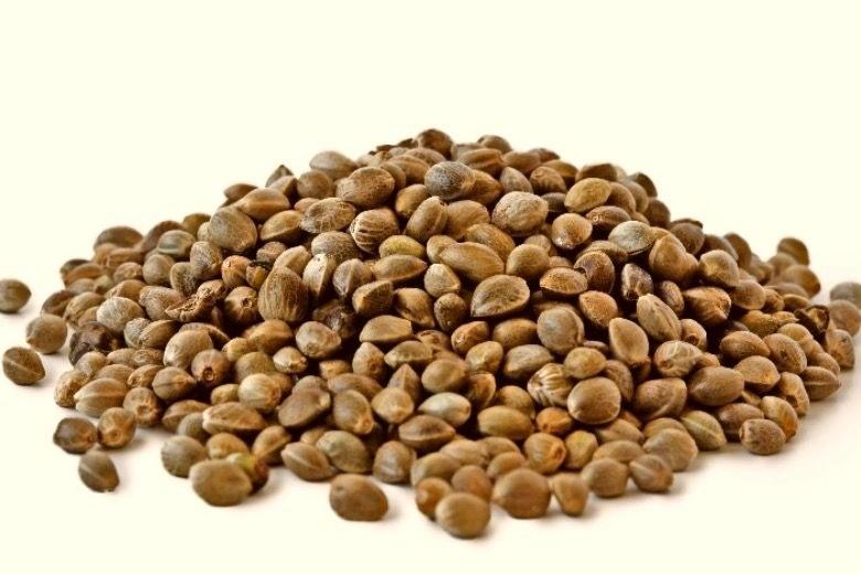 semillas feminizadas indica y sativa