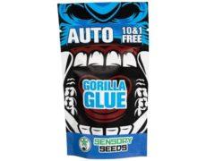 semillas de cannabis a granel gorilla glue 4