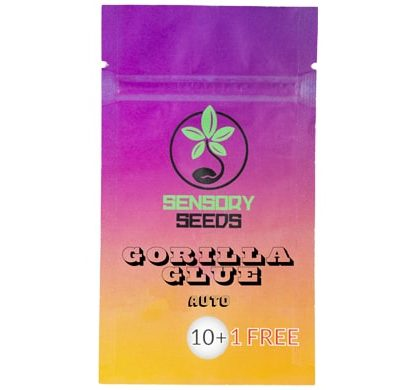 semillas-de-cannabis-a-granel-gorilla-glue-4