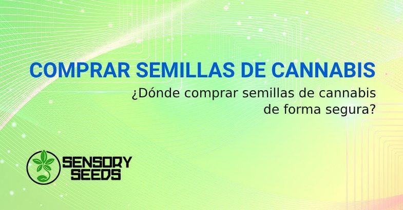 DONDE COMPRAR SEMILLAS DE CANNABIS