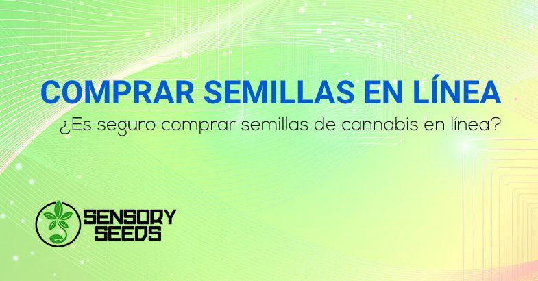 Es seguro comprar semillas de cannabis en línea