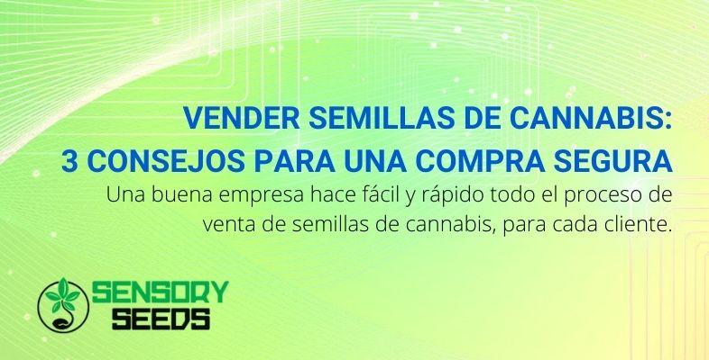 Vender semillas de cannabis 3 consejos para una compra segura