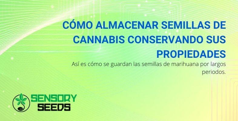 Cómo almacenar semillas de cannabis conservando sus propiedades