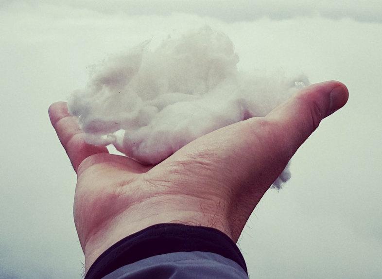 mano con el algodón para las semillas de cannabis