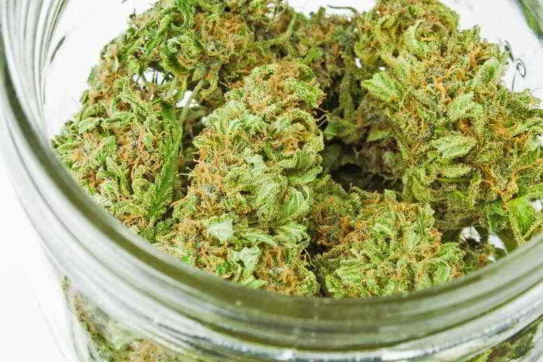 Flores de cannabis Lemon thai.
