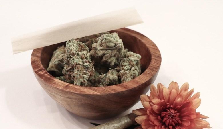 Cannabis sinsemilla es potente y aromático