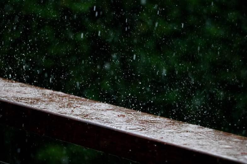 Lluvia peligrosa para la floración al aire libre