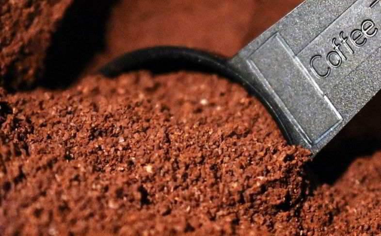 Alimento natural para plantas: café para mezclar con el sustrato.