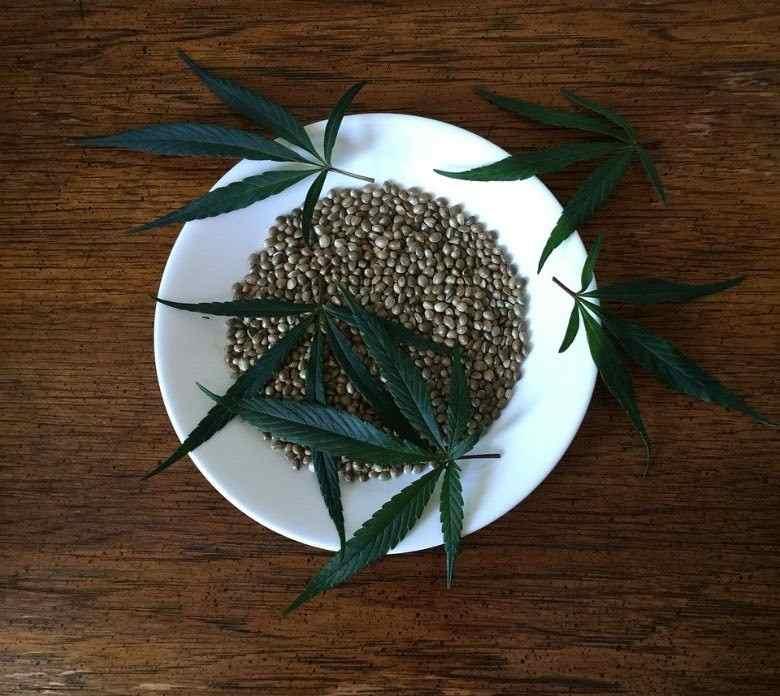 Compra segura de semillas de cannabis en línea