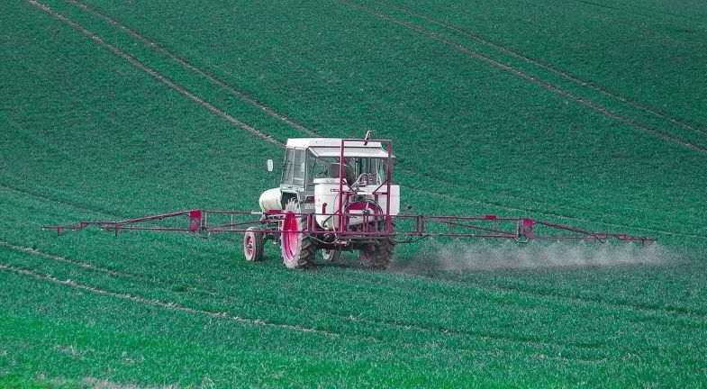 Herbicida: efectos sobre la salud humana.