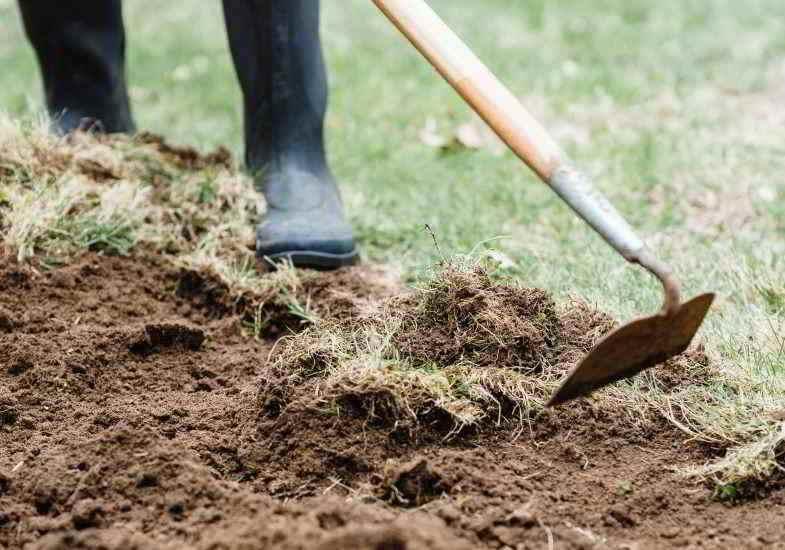 Método manual para evitar herbicidas y efectos sobre la salud.