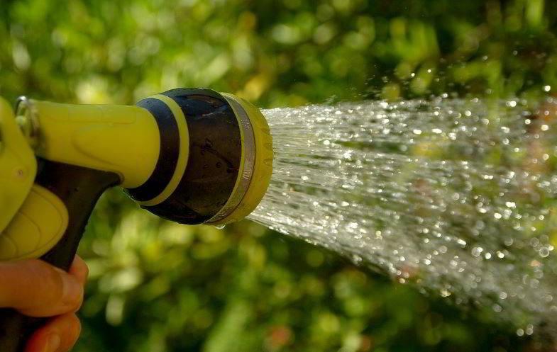 Dosificación de agua para la floración de cannabis