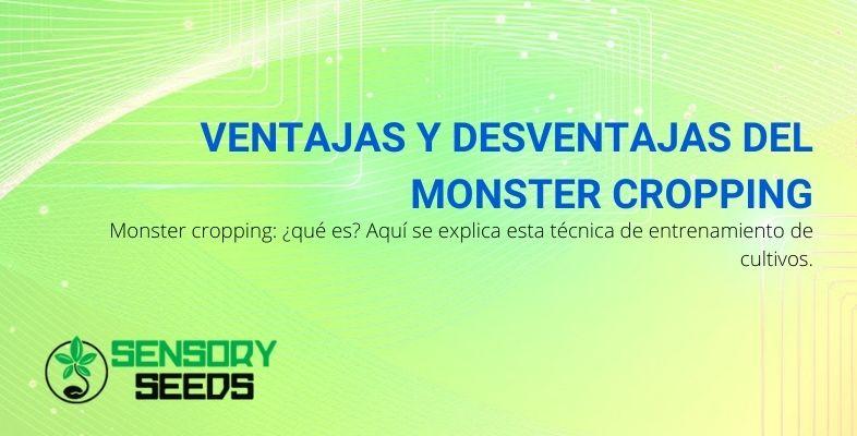 ¿Cuáles son las ventajas y desventajas de Monster Cropping? ¿Qué es eso?
