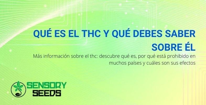 ¿Qué es el THC y qué debo saber?