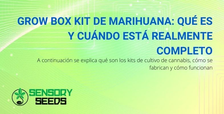 ¿Qué es el Grow box kit de marihuana y para qué sirve?
