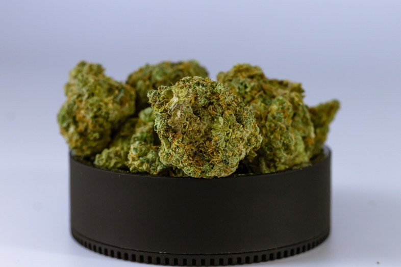 Un futuro brillante presagiado para los comerciantes de productos derivados del cannabis